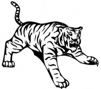 Tiger Toning.