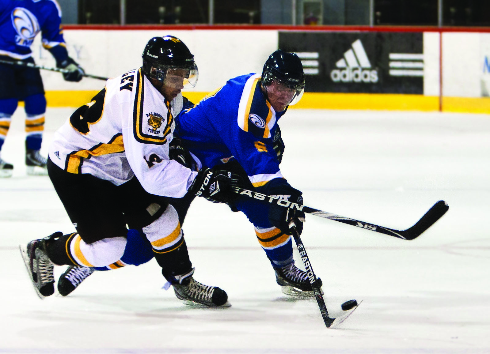 Men's hockey lose out. Photo by Martina Marien.