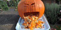 Only pumpkin allowed to make a mess. Photo by Raindog via flickr.