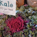 Kale for sale