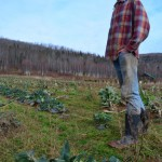 Ted Hutten, a local vegetable and fruit farmer in the Annapolis Valley
