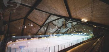 Dal Tigers: Winter 2012 Semester in Review