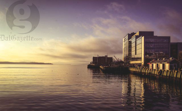 Projects like Skye Halifax could impose on views of the harbour. Photo by Calum Agnew