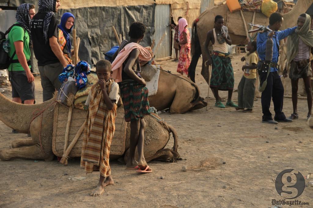 A camel caravan is organized before departure. (Bryn Karcha photo)