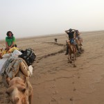 From left: Graham Litman, Gareth Coombes and Ellen Richmond board camels for a long journey. (Bryn Karcha photo)