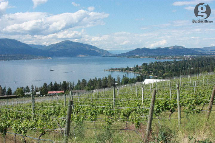 The Okanagan Valley is a ripe spot for Riesling. (Jessica Emin photo)
