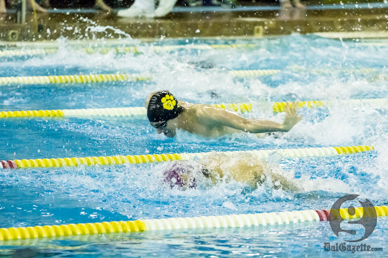 Rookie Jeremy Ryant and the Tigers swimming team was a force in the pool. (David Munro photo)