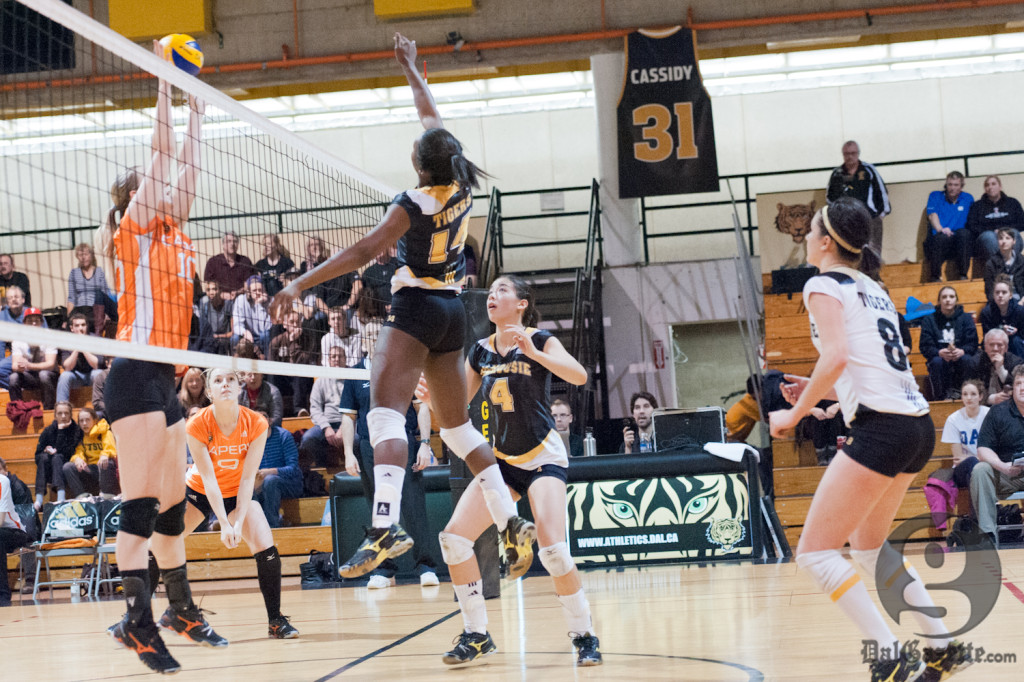 Rookie Rachel Wright helped the Tigers recuperate from a sluggish first set. (Chris Parent photo)