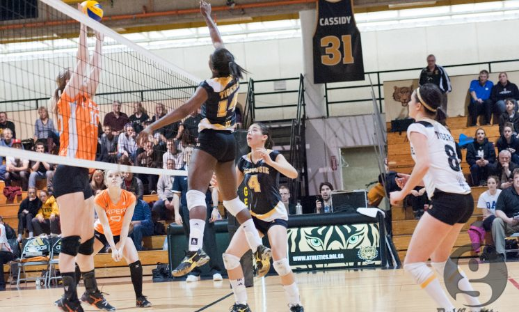 Winning spark for nationally ranked Tigers