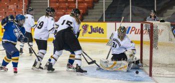 Dal women's hockey pleads for reinstatement