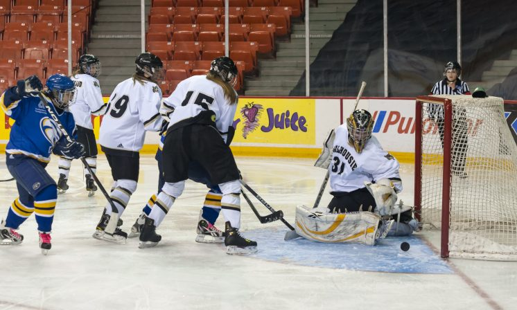 Dal women's hockey pleads for reinstatement