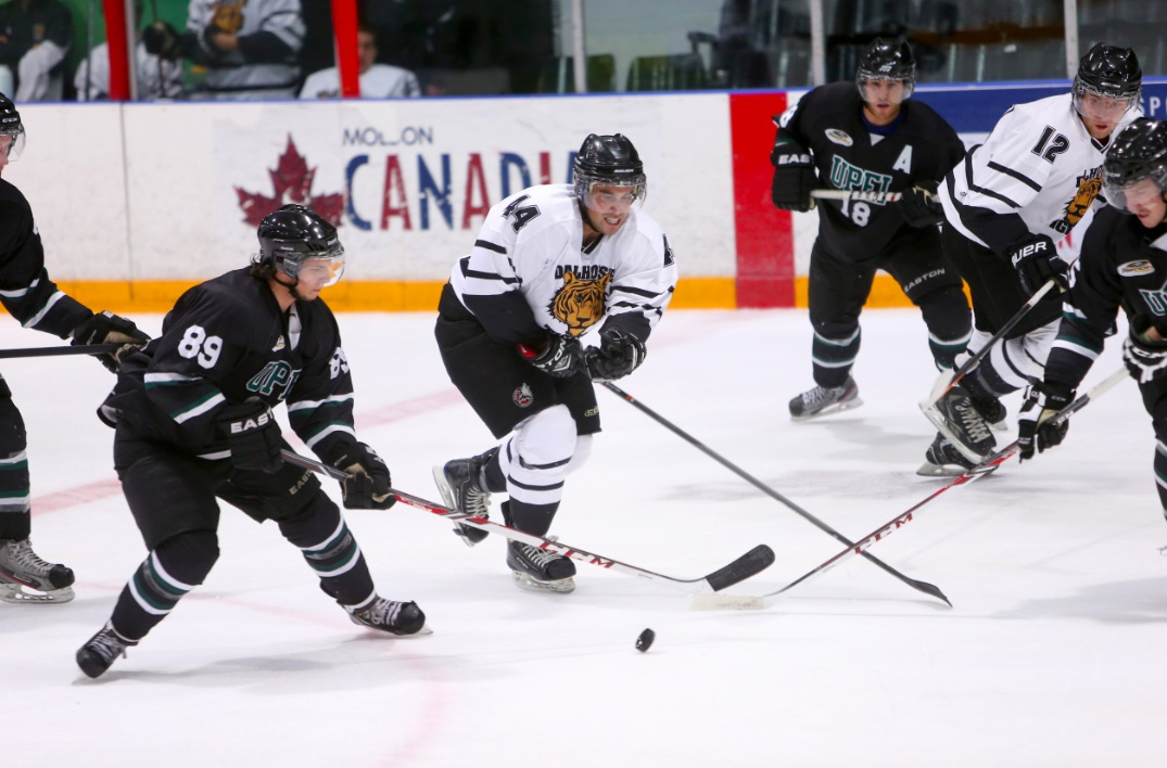 Andrew Roski (44) under pressure from the Panthers (photo by Nick Pearce via Dal Athletics)