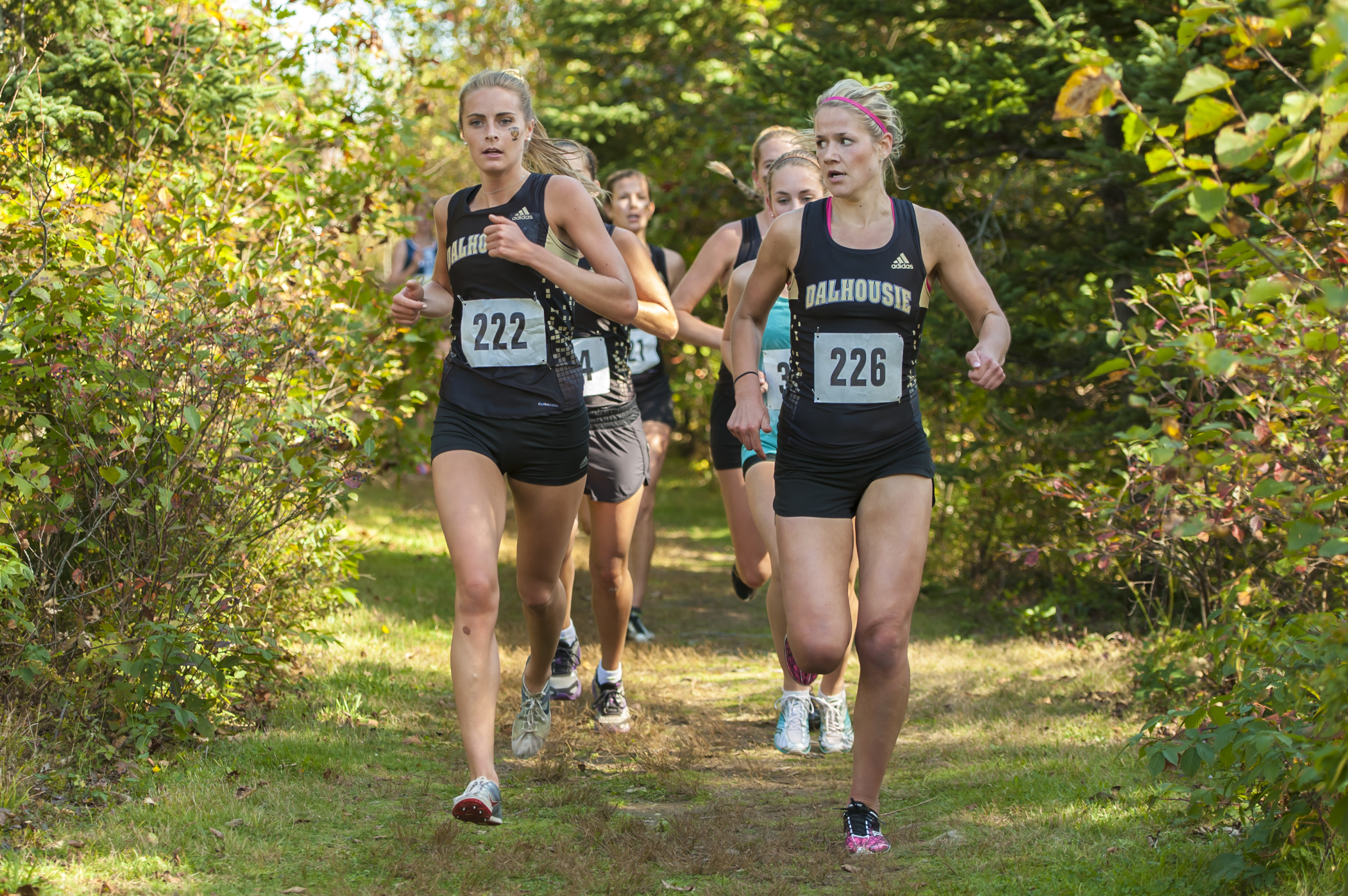 Cross-country leads the pack in this semester's rankings (Photo by Chris Parent)