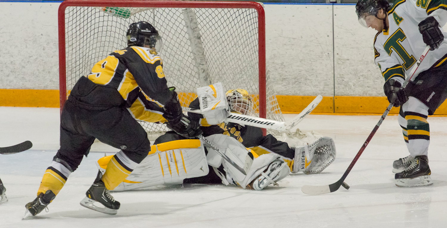 Tigers in action last year (photo by David Munro)