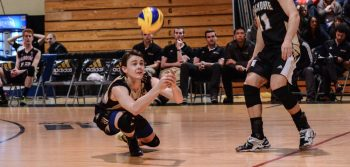 Men's volleyball routs Memorial