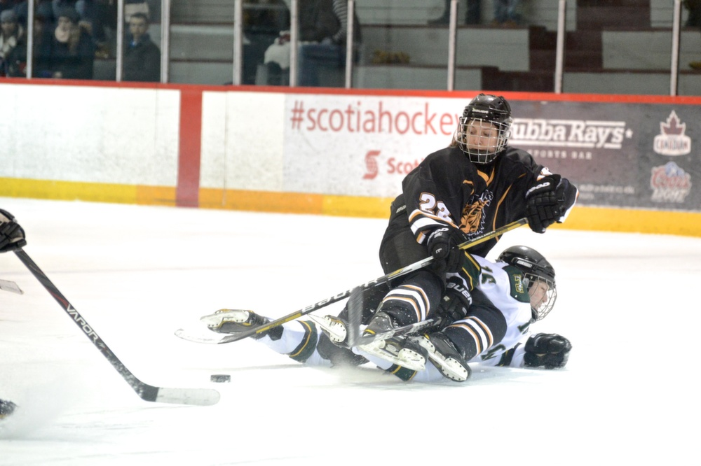 The women's hockey team wants to put the media focus back on the ice. (Photo by Kit Moran)