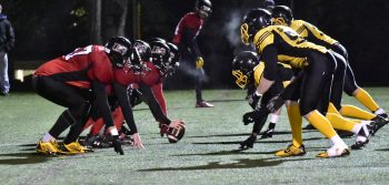 Gridiron Tigers Roll to Homecoming Win
