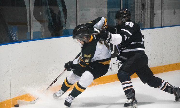Dalhousie men's hockey set to improve