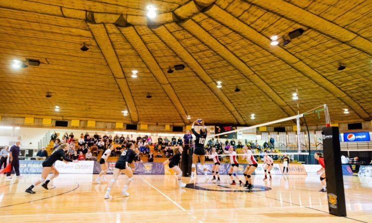 AUS volleyball championships preview