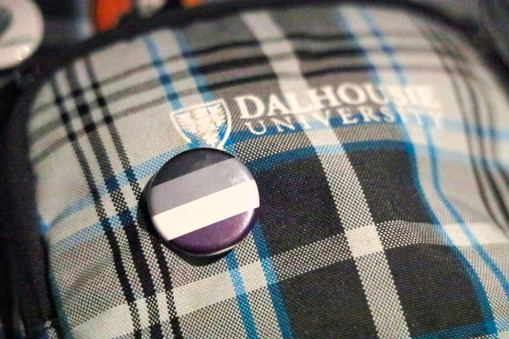 In this image: A pin featuring the asexuality flag.
