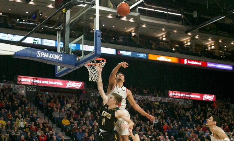 Tigers come up short in semifinals