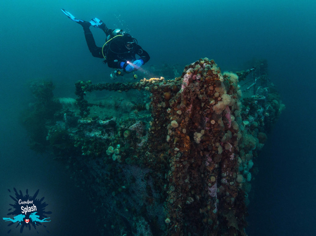 In this image: Joey Postma diving near the bow of a sunken ship.
