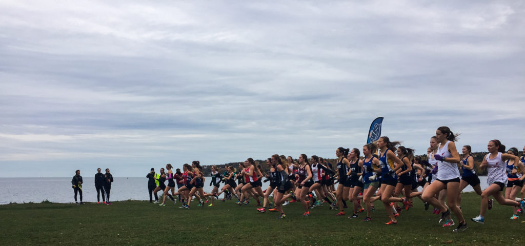 In this image: A large group of women start running in a cross country race.