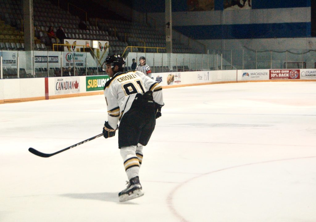 In this image: A Dalhousie Tiger's hockey player.