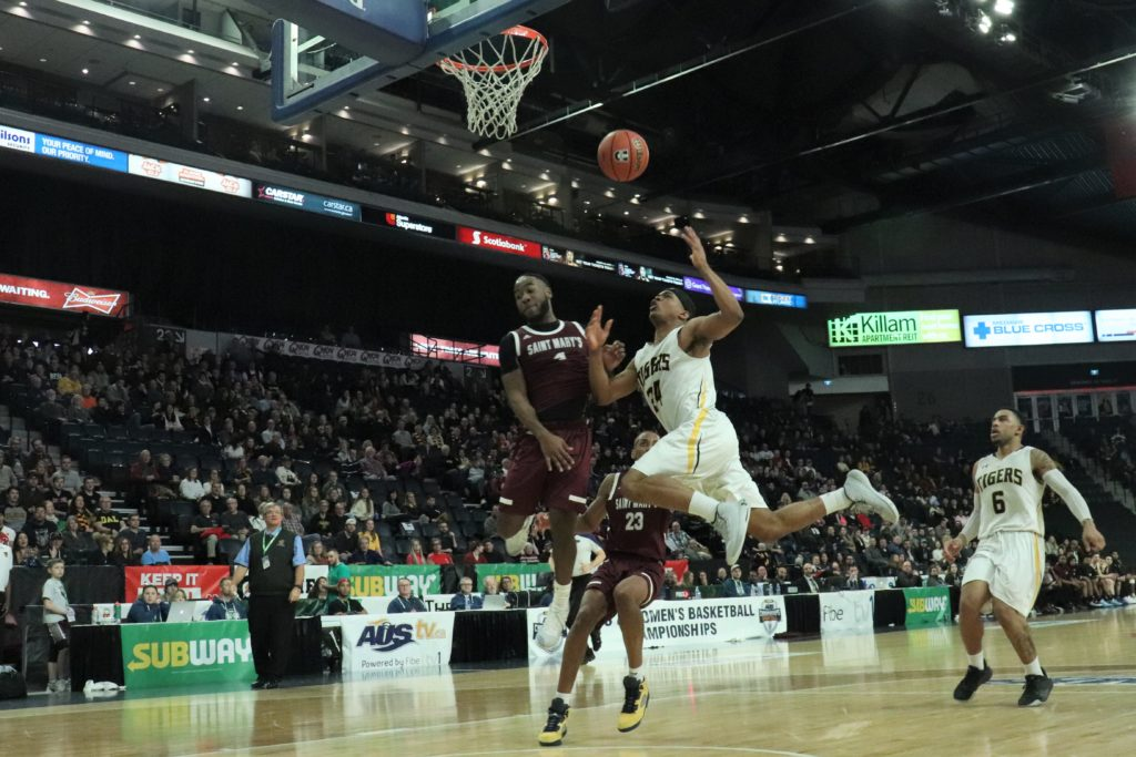 In this image: A Dalhousie Tiger bumps into a Saint Mary's Husky as they jump in the air shooting the ball.