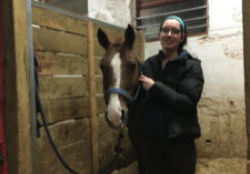 In defence of horse girls_Provided by Rebecca Dingwell