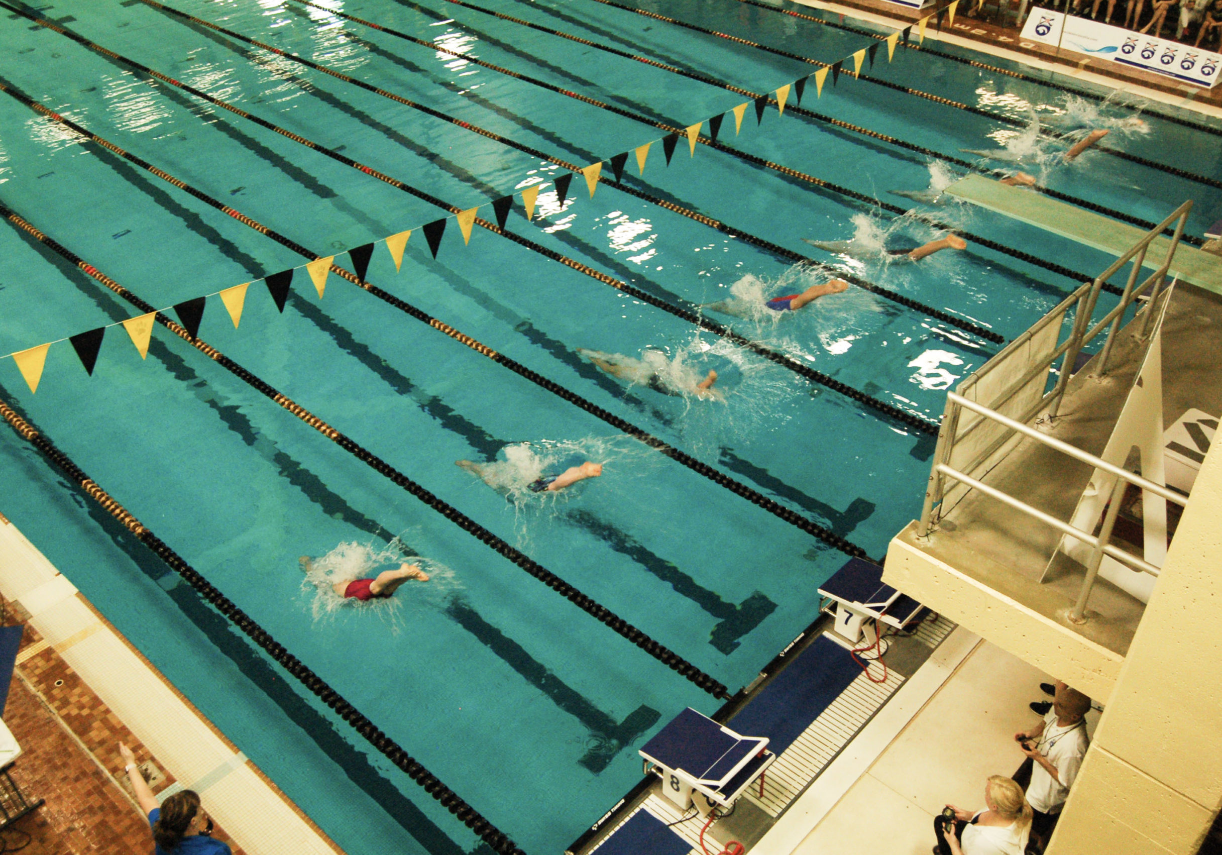 In this image: Swimmers dive into the Dalplex pool during an invitational.
